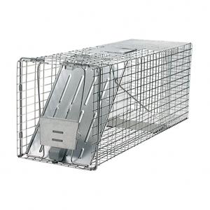 WEB-Lrg-trap