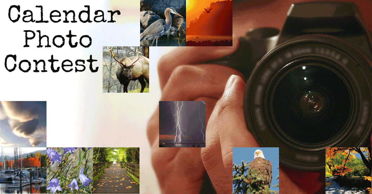 Calendar Photography Submissions : Calendar photography contest