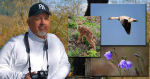 Composing and Presenting Your Photos – By Chuck Rondeau