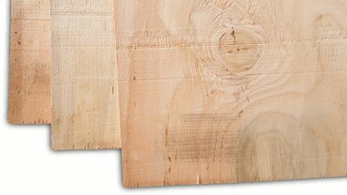 cdx plywood sheets