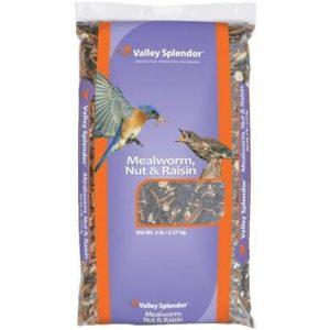 5 LB MEALWORM BIRD FOOD $10.99 + 25% OFF!