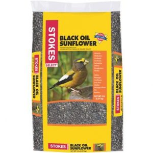 5LB OIL SUNFLOWER SEED $9.99 + 25% OFF!